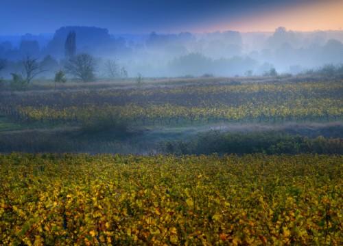 Balkanitas Wineries